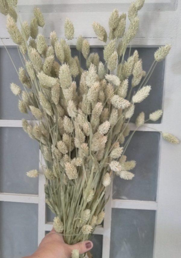 boeket droogbloemen naturel