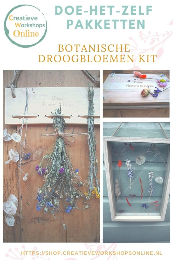 doe-het-zelf pakket botanische droogbloemen kit